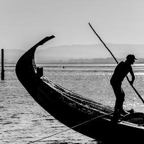 Moliceiro by Paulo Veiga - People Professional People ( moliceiro, waterscape, 2014, silhouette, boat water, paulo veiga, laggon.ria de aveiro, bw, pixoto, landscape, salt water, silhueta, portugal,  )