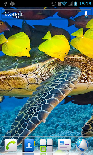 Marine fauna HD Live Wallpaper