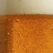 Beer Live Wallpaper Lite