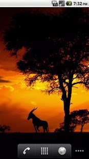 African Sunset Live Wallpaper - screenshot thumbnail