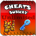 UNLOCK SUBWAY SURFER icon