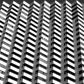 Building Eleven by Christopher Charlton - Black & White Buildings & Architecture ( frame, black and white, contemporary, art, buildings, architecture )