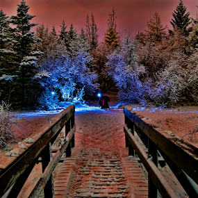 Snow night. by Konrad Ragnarsson - City,  Street & Park  City Parks ( lights, winter, konni27, ice, snow, trees, bridge )