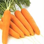 Dietas para Perdida de  Peso 9.0 Apk