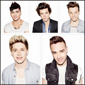 fotos biografia one direction