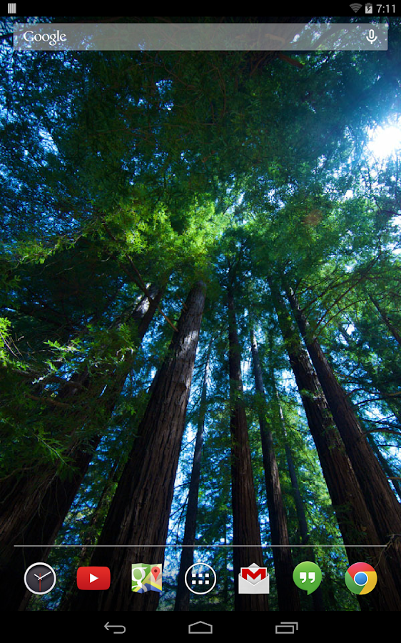 Redwoods Live Wallpaper - screenshot