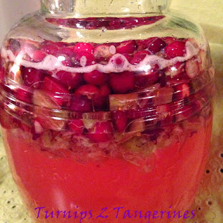 Cranberry Rhubarb Cordial.