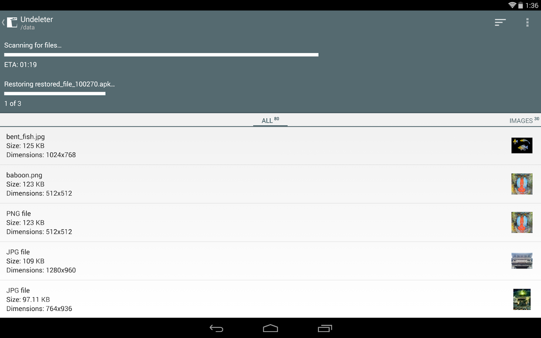 Undeleter for Root Users Key - screenshot