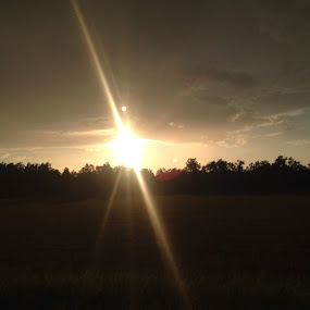 Starburst at Sunset by Trey Martin - Landscapes Sunsets & Sunrises ( field, starbursts, sunset, natural, no edits )