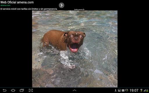 【免費娛樂App】New Fun Pics Every Day-APP點子