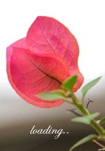 Natural Beauty Secret Tips