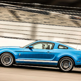 Mustang GT 500 by Patrick Quispel - Sports & Fitness Motorsports ( mustang, gt500, track, autosport, shelby, ford, mustang gt500 )