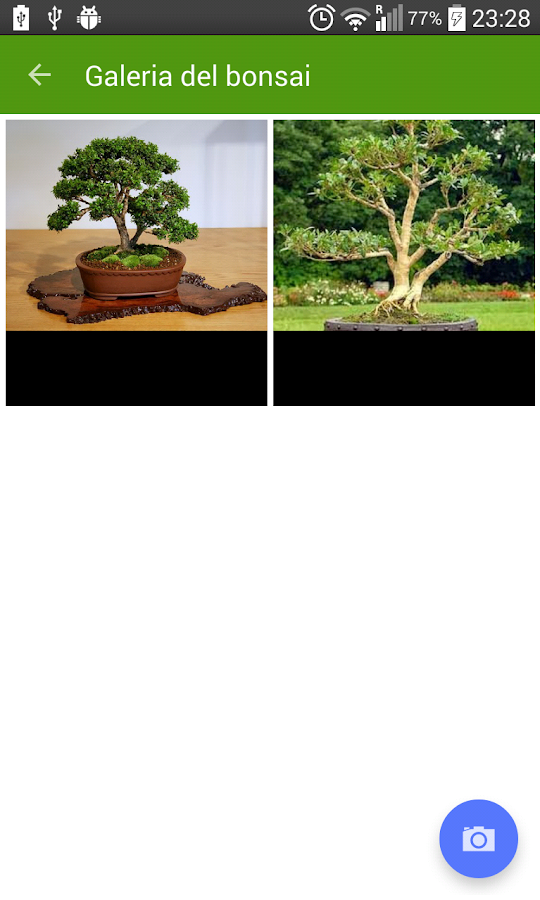 Bonsai Collection Gratis: captura de pantalla