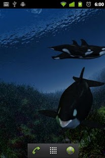 Orca Whale  live wallpaper - screenshot thumbnail