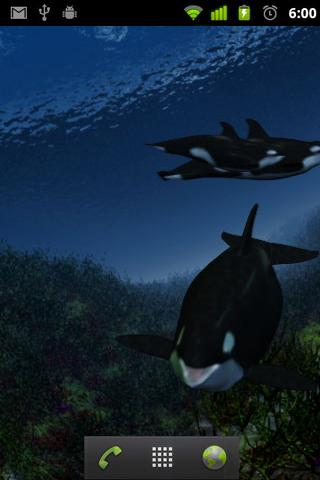 Orca Whale  live wallpaper - screenshot