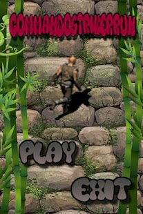 Commando-Striker-Run 2