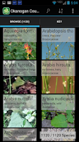 Screenshot of 1550 Wisconsin Wildflowers