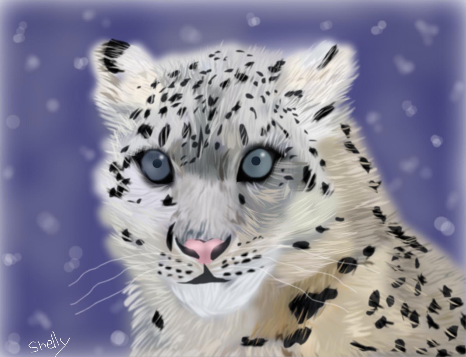 Snow Leopard » drawings » SketchPort