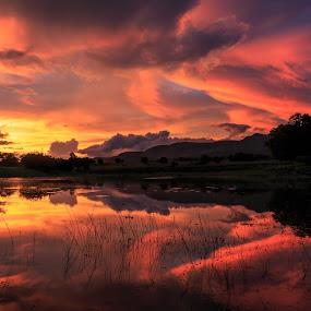 Crescendo by Hans-Erik Arp - Landscapes Sunsets & Sunrises ( clouds, sunset, sundown, lake, dusk, , golden hour, sunrise )