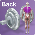 Daily Back Video Workouts icon