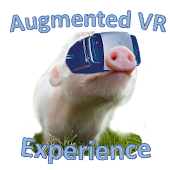 Augmented VR Experience Demo