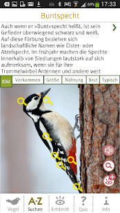 Vögel bestimmen Screenshot