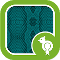 Go Locker Snake Skin Teal icon