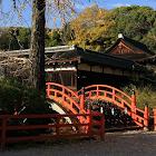 日本秋天拼图 icon