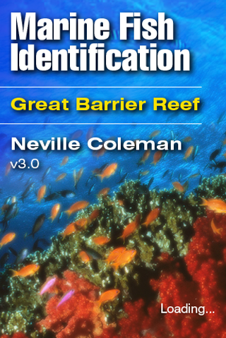 Fish ID Great Barrier Reef