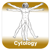 Anatomy - Cytology