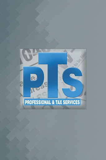PROFESSIONAL TAX AND SERVICES