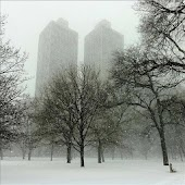 Snow New York live wallpaper