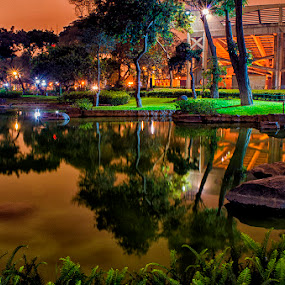 Reflections in The Park of the Exposition by Maritere Izaguirre - City,  Street & Park  City Parks ( peru, park, reflections, night, lima, city )