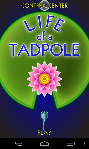 Life of a Tadpole
