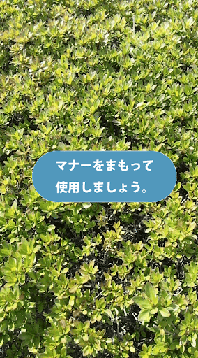 オトナシカメラ(音無 無音)