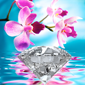 Orchids In Water IV icon