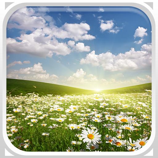 景觀動態壁紙 個人化 App LOGO-硬是要APP