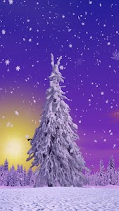 Winter Trees Live Wallpaper screenshot 7