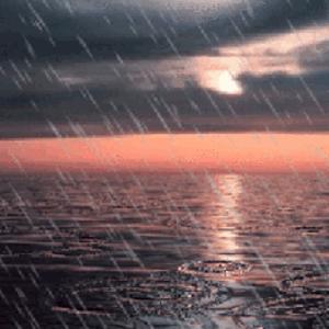 Sunset Sea Rain Live Wallpaper Free Android App Market