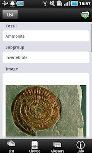 Fossils- screenshot thumbnail