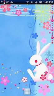 Rabbit Dream Story
