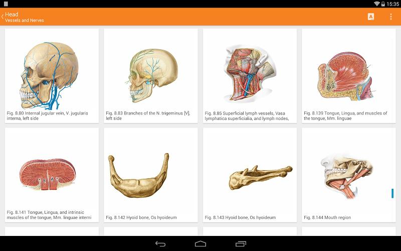 Sobotta Anatomy Screenshot 9
