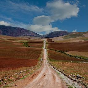Dirt Road by Anna Tatti - Landscapes Prairies, Meadows & Fields (  )