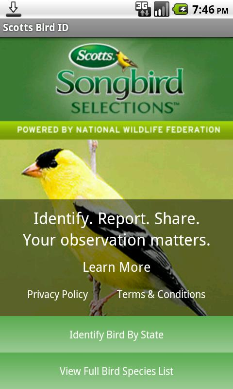 Scotts Bird ID - screenshot