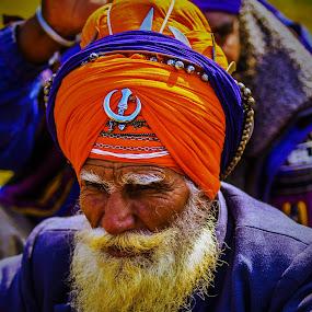 Fierce Fighters by Avanish Dureha - People Portraits of Men ( colourful people, sikh, punjab, dureha@gmail.com, incredible india, nihang, avanish dureha,  )