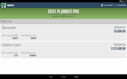Debt Planner Pro
