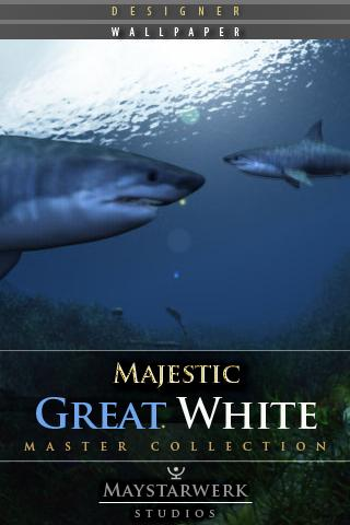 GREAT WHITE WALLPAPER - screenshot