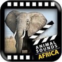 Best African Animals Sound icon