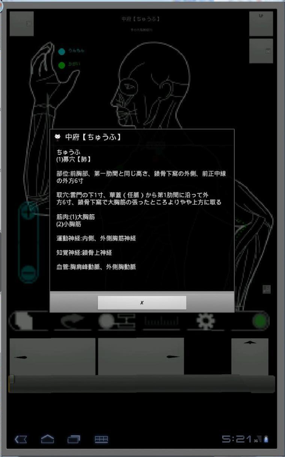 Acupuncture (Nagomi · Pro)- screenshot