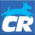 Clean Run icon